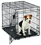 Small Dog Crate | MidWest Life Stages 24' Folding Metal Dog Crate | Divider Panel, Floor Protecting Feet, Leak-Proof Dog Tray | 24L x 18W x 21H Inches, Small Dog Breed