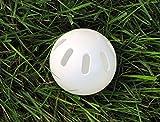 Wiffle Ball Original Brand Baseballs, Regulation
