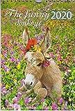 Greek wall calendar 2020: The funny donkeys of Greece