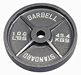Troy Barbell USA Sports Gray Olympic Plate – 100 lbs. Review