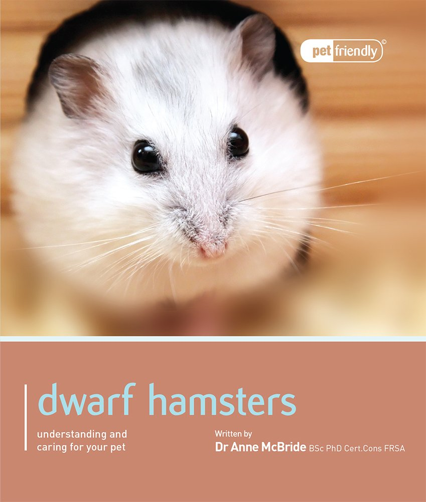 Dwarf Hamsters - Pet Friendly: Understanding and Caring for Your Pet:  Amazon.co.uk: Dr Anne Mcbride: 9781907337062: Books