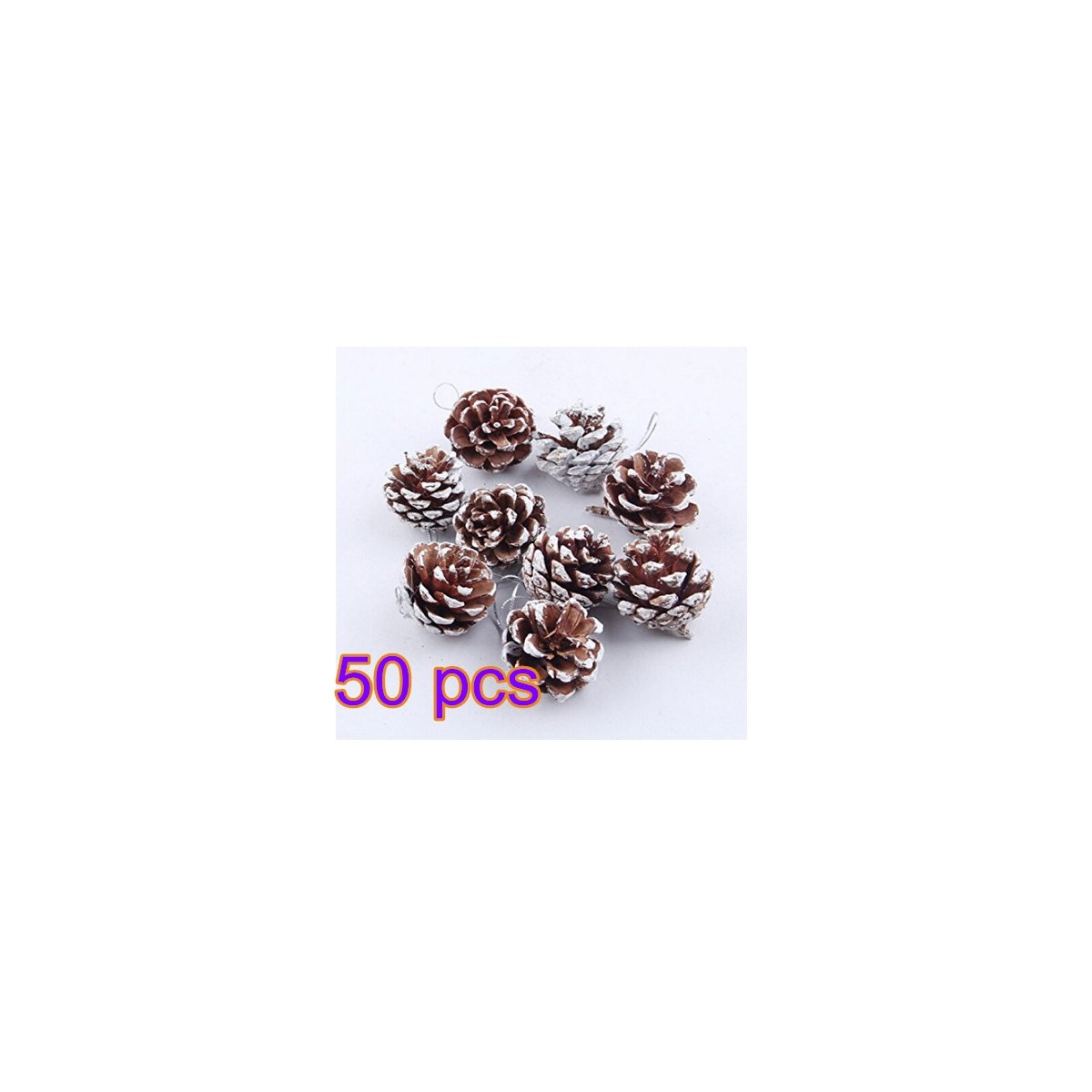 Banbo Yohi Christmas Mini Pine Cones with String Natural Pine Cones for Christmas Tree Decoration 50pcs BanboYohi
