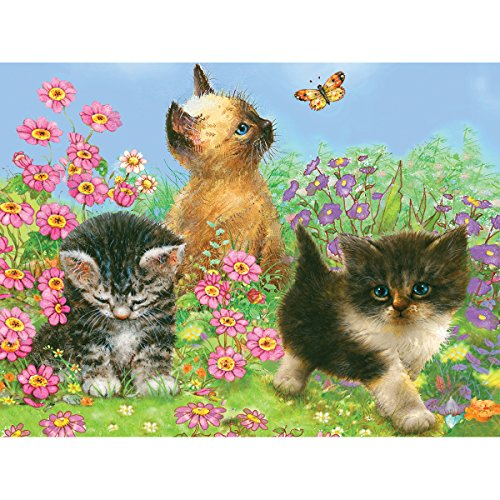 """Color Pencil By Number Kit 8.75""""X11.75""""-Kittens"""