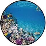 Printing Round Rug,Ocean,Clear Underwater Sea Life Animal World Corals Tropical Fishes and Stingray Mat Non-Slip Soft Entrance Mat Door Floor Rug Area Rug For Chair Living Room,Aqua Purple and Tan