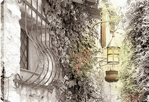 - ArtMaison.ca TURKONL430 P.T. Turk Antique Lamp Landscape Photography Wall Art Decor