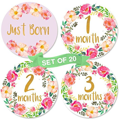 Born Baby Girl (Baby Monthly Milestone Stickers | Set of 20 Floral Gold Stickers | Birth to 12 Months + 8 Bonus Achievement Stickers | Best Baby Shower Gift for Baby Girl)