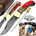 "Multi Wood 6.5'' Handmade Damascus Steel Brass Bloster Back Lock Folding Pocket Knife Sharpening Rod 100% Prime Quality Plus Beautiful Blue Wood Stainless Steel Pocket knive ""LIMITED OFFER"""