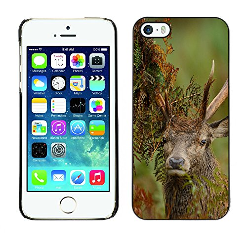 Omega Case PC Polycarbonate Cas Coque Drapeau - Apple iPhone 5 / 5S ( Funny Majestic Stag )