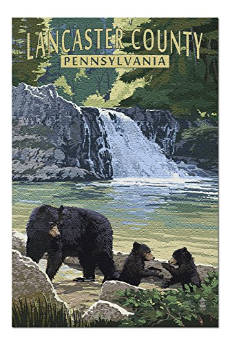 Lancaster County, Pennsylvania - Black Bears and Waterfall (20x30 Premium 1000 Piece Jigsaw Puzzle, Made in USA!) (Lantern Lancaster Wall Black)
