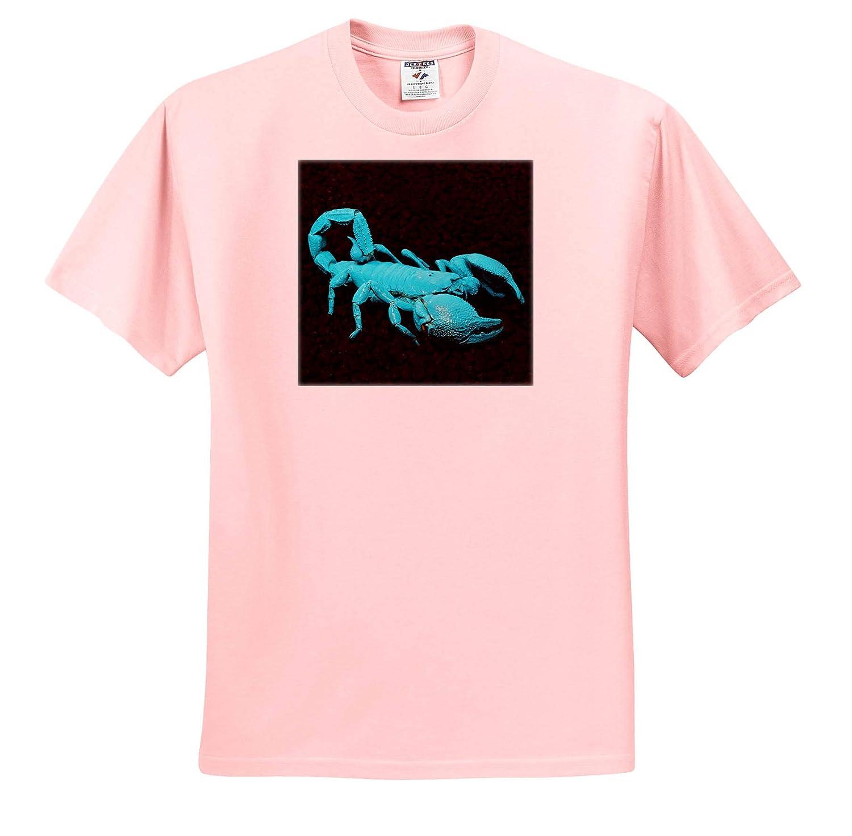 - Adult T-Shirt XL 3dRose Danita Delimont ts/_314645 California Emperor Scorpion Under Black Light Scorpions USA