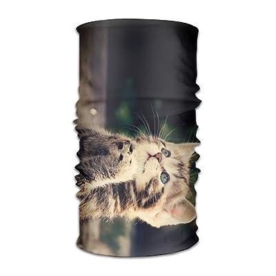 Funny Cat Pattern DIY Pattern Headband Bandana Mask Sports Seamless Breathable Hair Band Turban For Workout, Fitness, Running, Cycling, Yoga