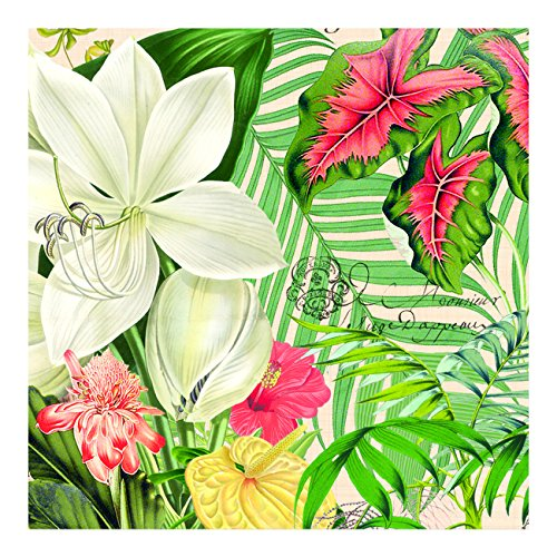 Michel Design Works 20-Count 3-Ply Paper Luncheon Napkins, Vanilla (Tropical Palm Dinner)