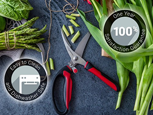 Heavy Duty Kitchen Scissors | Dishwasher Safe Stainless Steel | MultiPurpose Professional Grade Poultry Shears - Great for Cutting Meat, Chicken, Bone, Fish, Game, Floral Arrangements and Other Food by Culinary Obsession (Image #6)