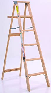 product image for LADDER STP WD TYPE2 225LB 6FT