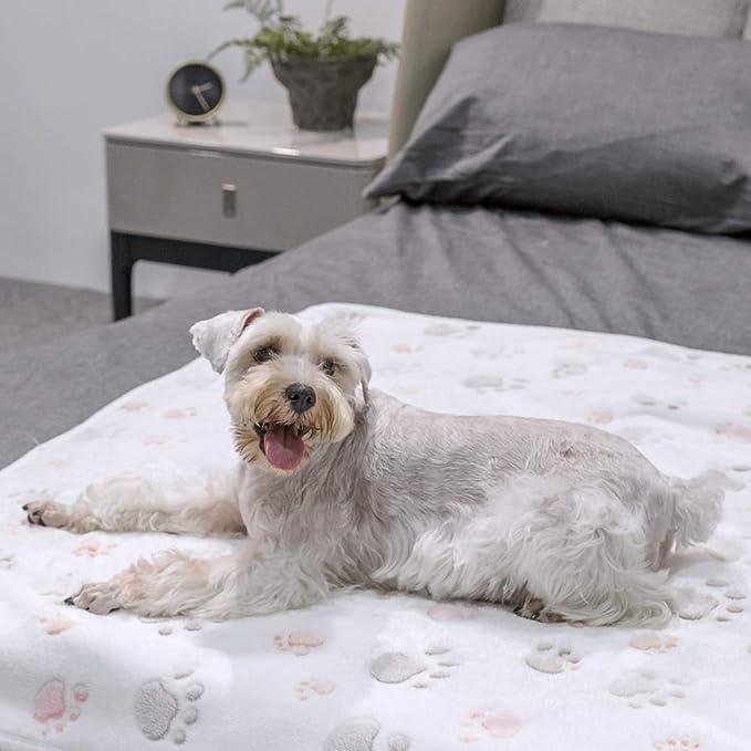 Allisandro Manta Perro Cojin con Huellas de Patas Pintadas Cama para Animales Beige 200X150cm: Amazon.es: Productos para mascotas