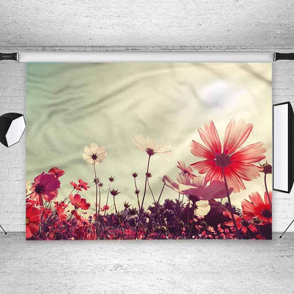 8x8FT Vinyl Wall Photography Backdrop,Floral,Vintage Cosmos Plant Sky Background for Party Home Decor Outdoorsy Theme Shoot Props
