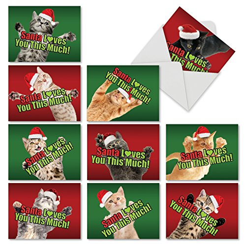 10 Assorted 'Santa Loves You This Much Cat' Christmas Cards with Envelopes 4 x 5.12 inch, Boxed Season's Greetings Cards for Kids and Adults, Cute Santa Cats Offering Hugs and Love M6610XSB ()