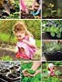 Home Gardening Gift for Kids - 5 Culinary Herb Seeds - Organic Grow Cooking Herbs - Unique Christmas Gift