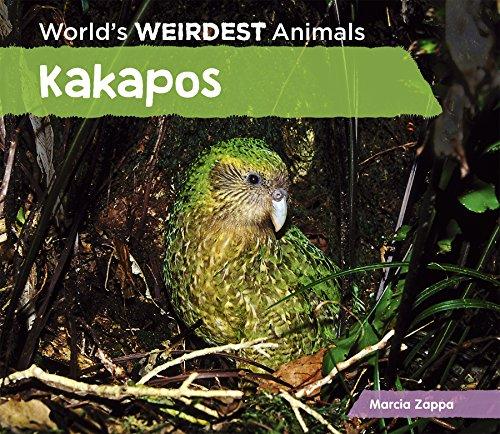Kakapos (World's Weirdest ()