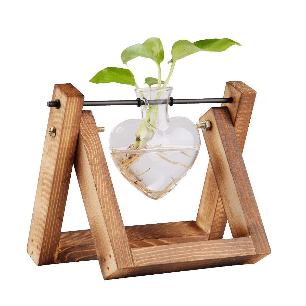 jiabang Glass Planter Terrarium with Retro Solid Wooden Stand for Hydroponics Plants Flowers, Home Garden Wedding Decor, Desktop Table Shelf Showpiece