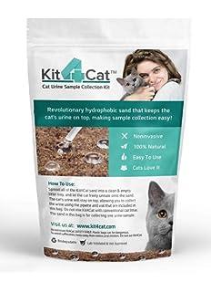 cat body waste effort cost