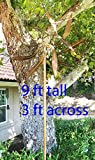Stanwood Wind Sculpture: Large Kinetic Copper Dual Spinner - Dancing Willow Leaves Jumbo Version (3-ft Across, 9-ft Tall)