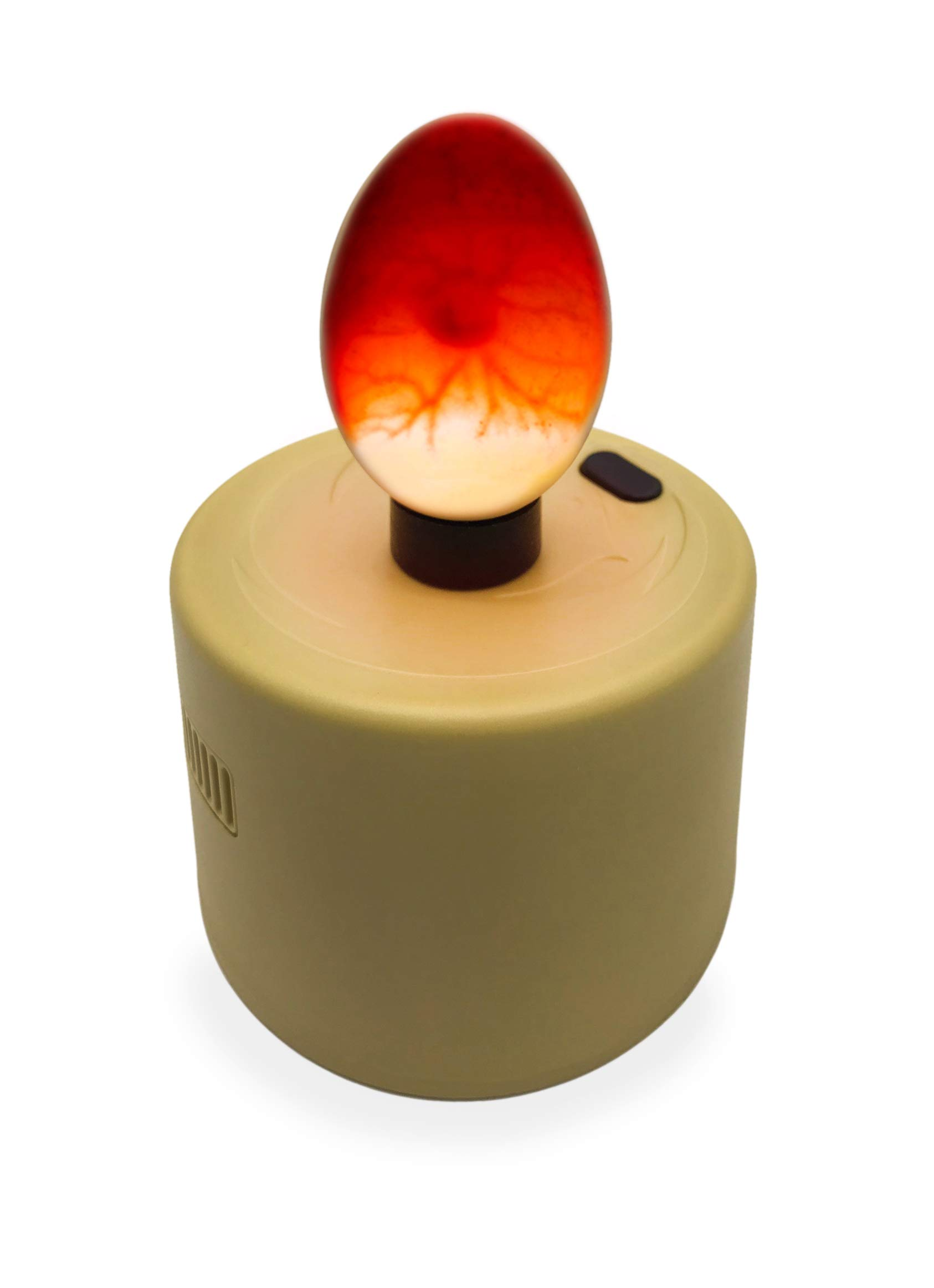 Titan Incubators High Intensity LED Chicken Egg Candler/Tester - Battery Powered by Titan Incubators