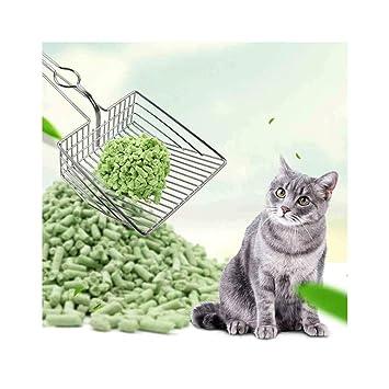 Amazon.com: FILOL - Pala de arena para gatos, gatos, gatos y ...