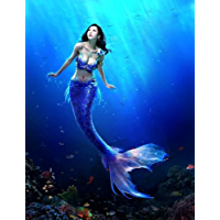 A Mermaids Tale: A fishy tale of transformation (English Edition)
