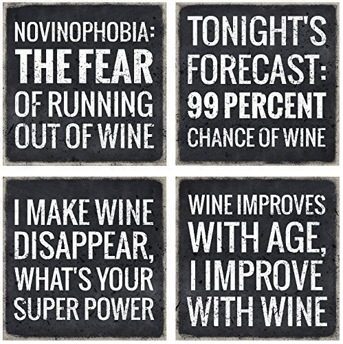 VinoPlease 4 Wine Coasters - Wine Gifts Accessory for Any Wine Enthusiast by Vino Please