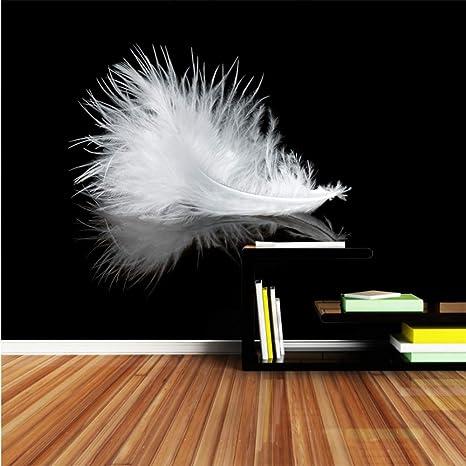 Amazoncom Xbwy Modern Large Wallpaper Black White Feather