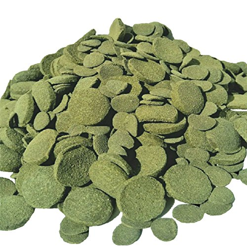 - Wafers Mixed Size Wafers of Spirulina, Algae, Wafers for Plecos, Catfish & More 1-lb