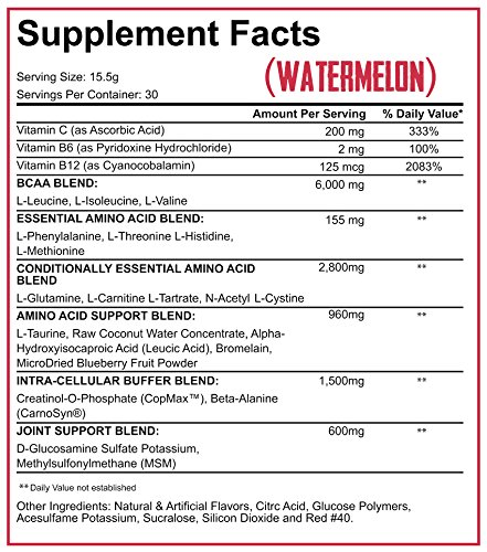 Rich Piana 5% Nutrition All Day You May BCAA & Joint Recovery Drink (Watermelon) 17.2oz (465 Grams) 30 Servings