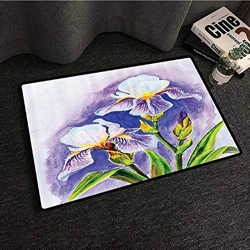 (Watercolor Flower Decor Collection Printed Door mat Painting of Iris Flower Elegant Spring Season Blooming Plant Nature Art Hard and wear Resistant W35 xL47 Violet Green Blue)
