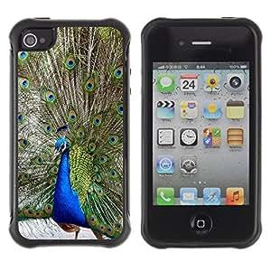 All-Round híbrido Heavy Duty de goma duro caso cubierta protectora Accesorio Generación-II BY RAYDREAMMM - Apple iPhone 4 / 4S - Peacock Tale Feathers Bird Blue Green