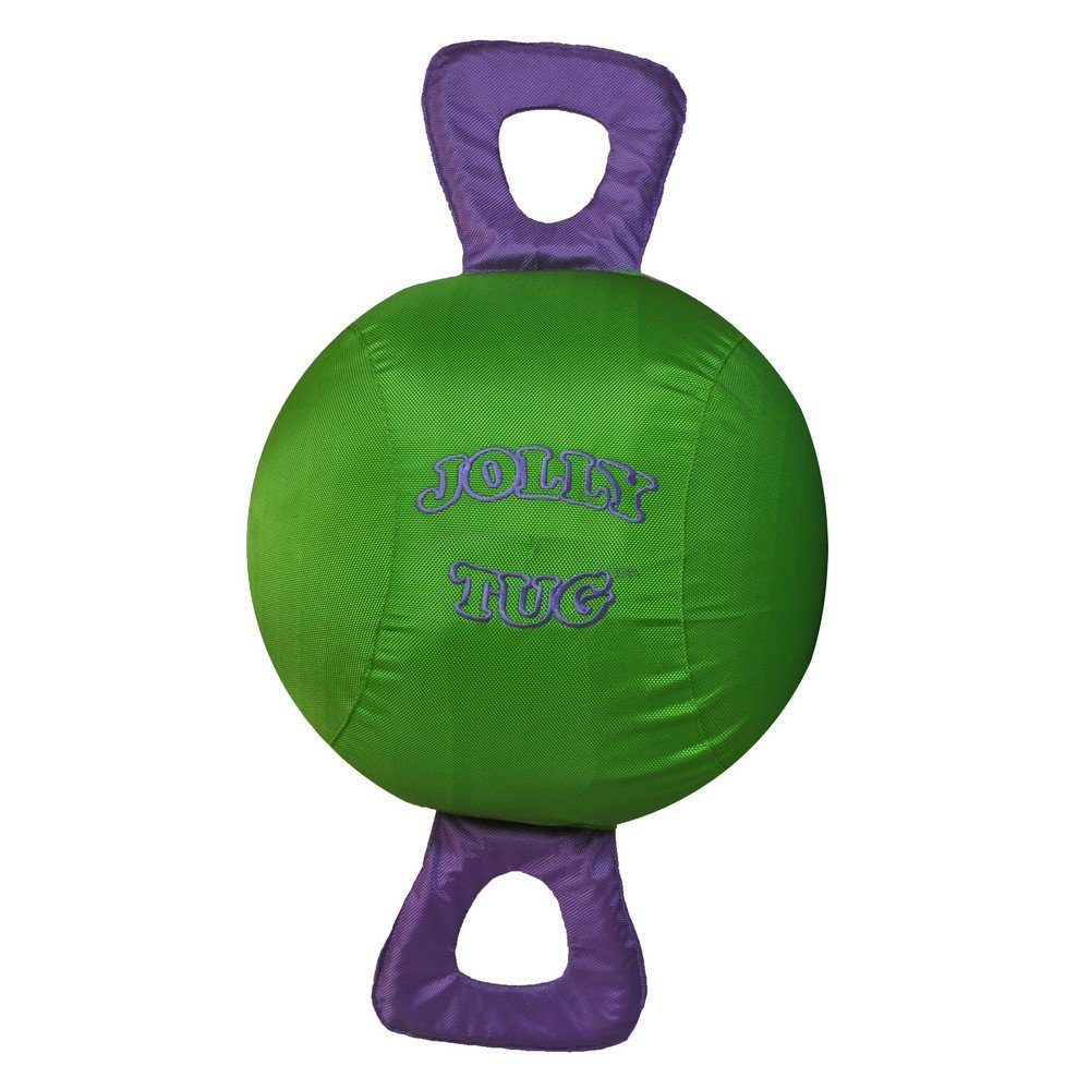 Jolly Pets Jolly Tug (14 inches) (Green)