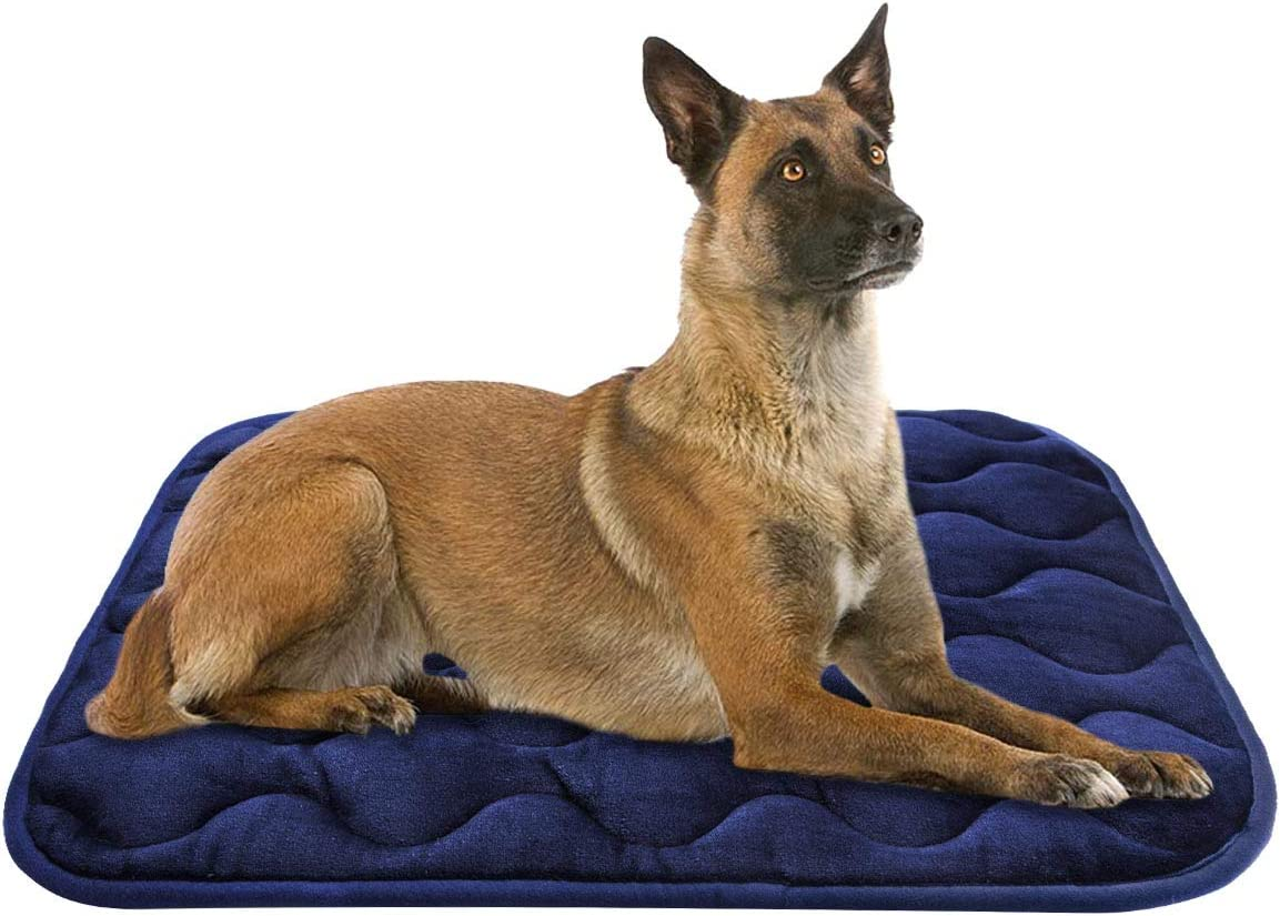 AIPERRO Dog Bed Crate Pad 30 36 42 46 Inch Anti Slip Portable Pet Sleeping Mattress Washable Kennel Mat for Large Medium Small Dogs and Cats, Blue