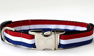 product image for Patriotic Pooch Dog Collar and Leash - Size M/L