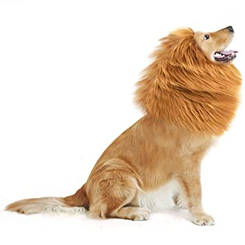GABOSS León Mane peluca disfraz para perro/León para grandes mascota Festival Fiesta Fancy ropa