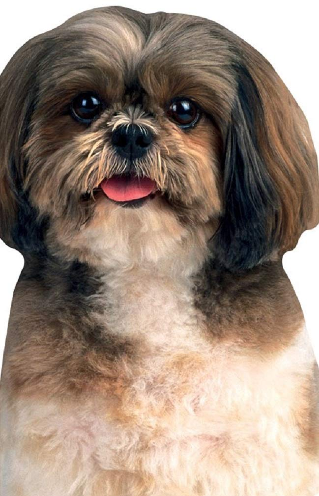 Playhouse Shih Tzu Die Cut Shaped Pocket Notebook for Kids Paper House