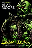 img - for Saga of the Swamp Thing, Book 2 book / textbook / text book