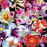 500 Flowers, , 0954684346