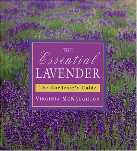 Read Online Essential Lavender : The Grower's Guide ebook