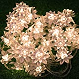 LED String Lights 4M/13feet 40 LED Lotus Flower for Chrismas, Party, Wedding, Indoor, Garden Décor (Warm white)