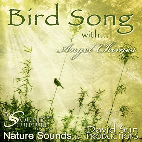 Bird Song with Angel Chimes (A Sound Sculpture) -