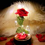 2021 Beauty and The Beast Rose,Enchanted Red Silk Rose in Glass Dome with LED Light, Romantic Rose Kit, for Best Gifts Valent