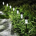 GIGALUMI Solar Pathway Lights Outdoor