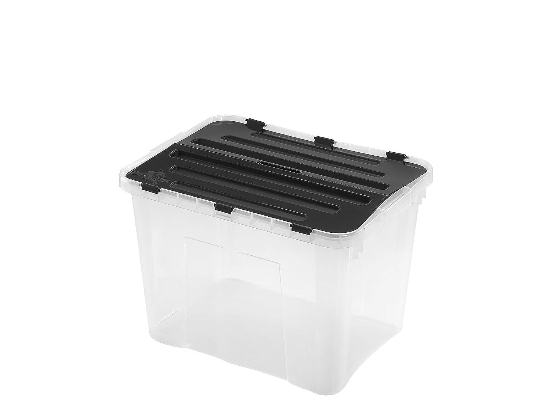 Heidrun Europlastic Srl Dragon Box with Divided Lid