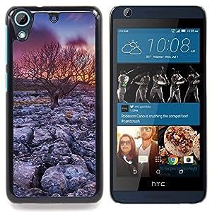 TikTakTok Funda Carcasa protectora para HTC Desire 626 - Árbol de la puesta del sol del desierto