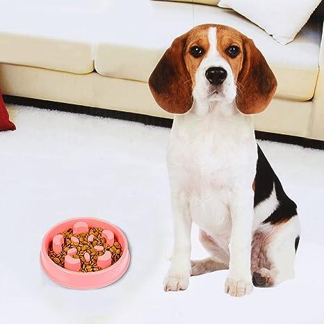 Niocase Comedero Perro para Pequeño Medium Gran Perros y Gatos Pétalos Single Groove Rojo